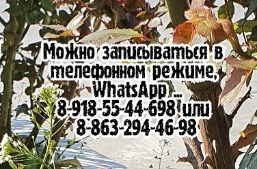 Лучший отоларинголог в Ростове